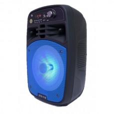 Boxa Bluetooth KTS-1119 radio,mp3 , telecomanda + microfon